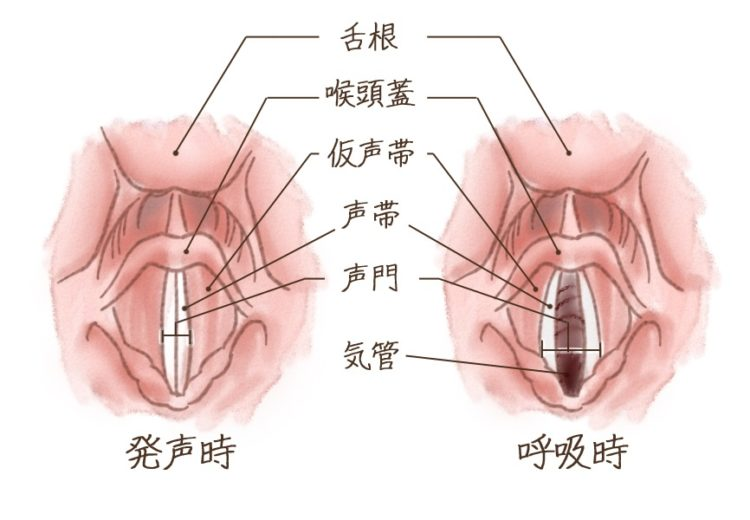 咽頭 が ん 初期 症状