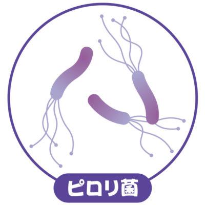 胃がんの原因ヘリコバクターピロリ菌とは?
